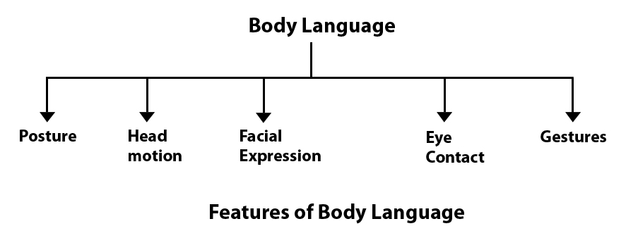 body language communication theory body language
